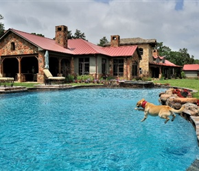 Exterior: Pool and deck install by Pool-Tex of Brenham.